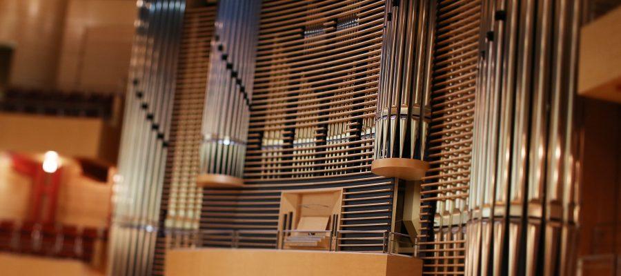 Huhn Orgel